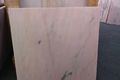 Rosa Marble_tile